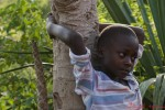 Felton holding a tree in his Gramdmother's compound. Felton and his sister Seraphine are beneficiaries of The Child Behind Project.