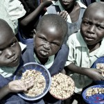 Children at Gacueni Primary school eating a meal of beans and maize commonly referred to as Githeri. The children pick out the beans first and eat them alone before they eat the maize.