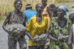 Women carry large clay rocks to place on the break in the dyke on 17th March 2015 at Pakuor during a community driven initiative to repair a broken dyke.